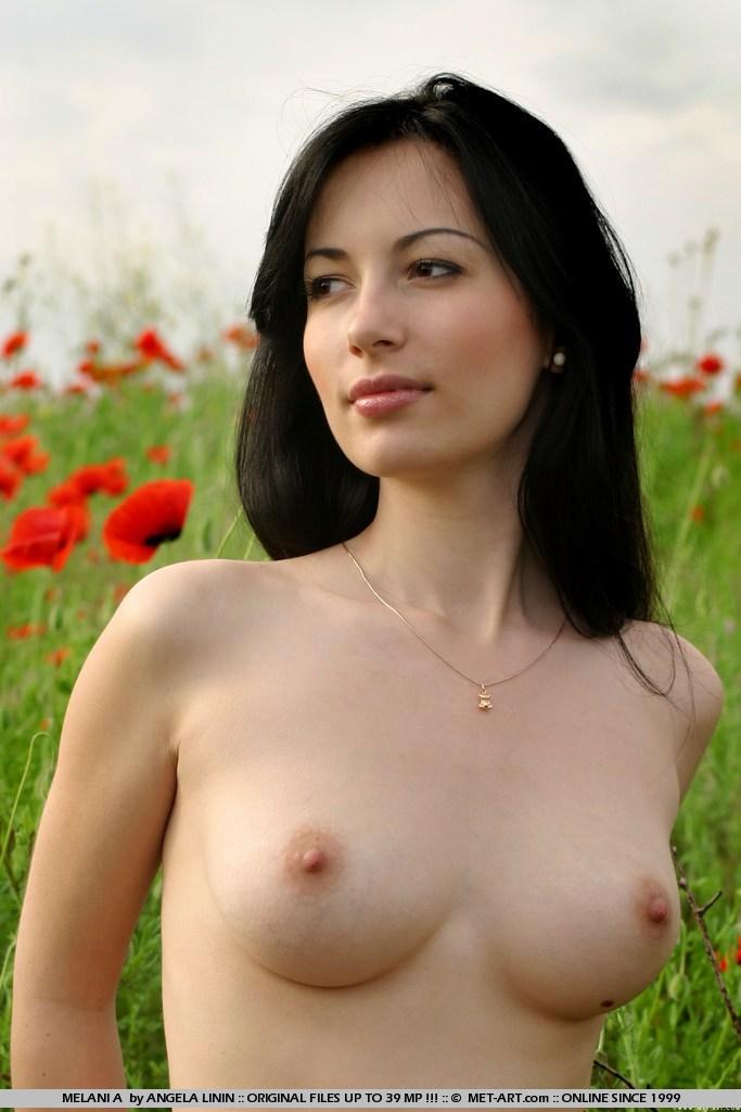 Xiaolin showdown lasbein porne